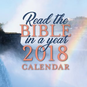 Bible in a Year Calendar.2up cover